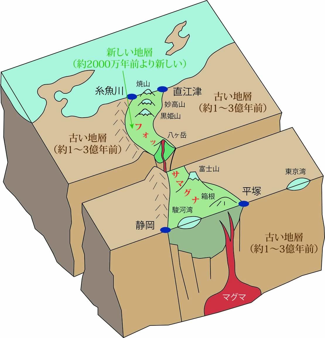 糸魚川-静岡構造線は、日本列島を地質学的な東北日本と西南日本に分ける断層