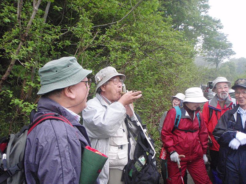 坂田峠で植物観察(きらら自然の会)